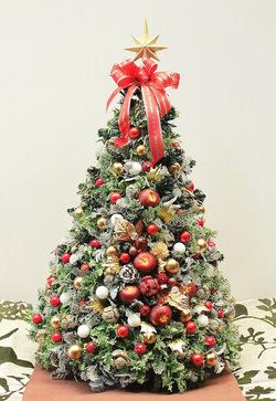 クリスマスツリーにも最適