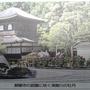 須賀川牡丹(ぼたん)園