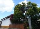 旧脇本陣柳屋旅館 蔵座敷改修工事